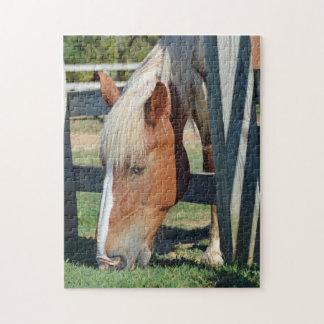 Puzzle La hierba es más verde en el otro caballo lateral