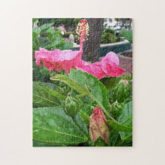 Puzzle Lagarto camuflado debajo de la fotografía rosada