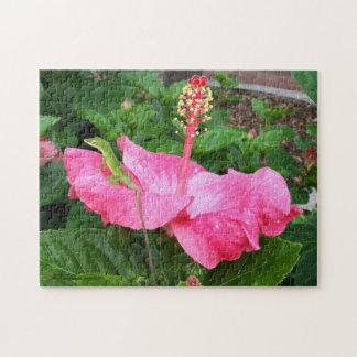 Puzzle Lagarto de Anole en la fotografía rosada del