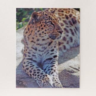 Puzzle Leopardo hermoso -