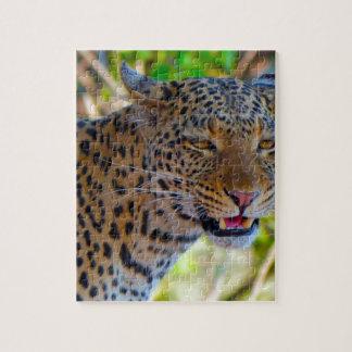 Puzzle Leopardo manchado