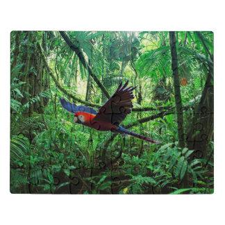Puzzle Macaw del escarlata