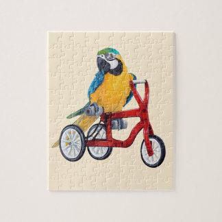 Puzzle Macaw del loro en la bici del triciclo