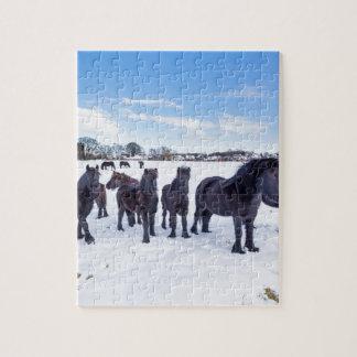 Puzzle Manada de los caballos negros del frisian en nieve