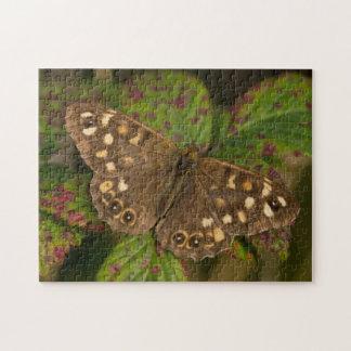 Puzzle Mariposa de madera manchada