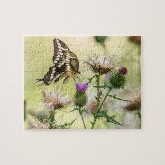 Puzzle Mariposa gigante de Swallowtail