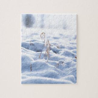 Puzzle Nieve en un prado en macro del invierno