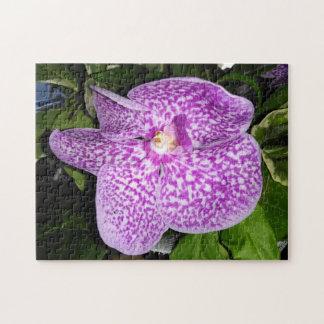 Puzzle Orquídea manchada púrpura