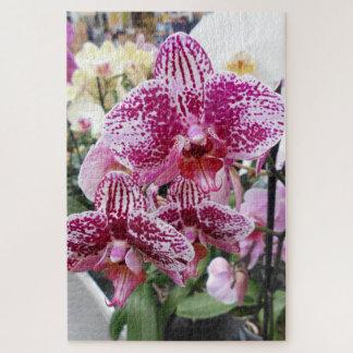 Puzzle Orquídeas manchadas del rosa y blancas del