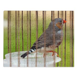 Puzzle Pájaro del pinzón de cebra en jaula