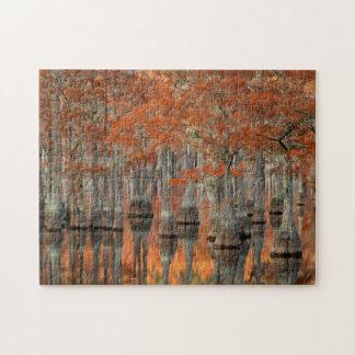 Puzzle Parque de estado de los árboles de Cypress el |