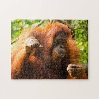 Puzzle Parque zoológico de Singapur del orangután.