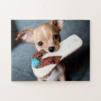 Puzzle Perrito adorable de la chihuahua