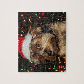 Puzzle Perro lindo de Yorkshire Terrier con el gorra de
