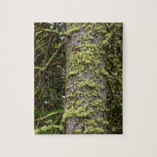Puzzle Pine_Tree_Moss