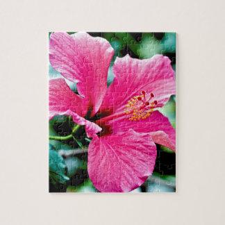 Puzzle Pink hibisco