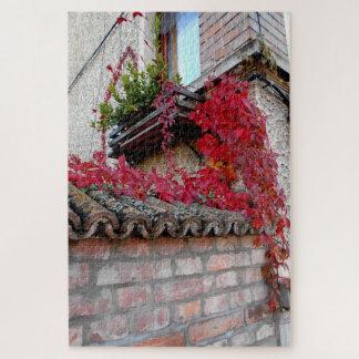 Puzzle Planta corriente roja y la ventana