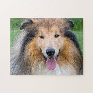 Puzzle Rompecabezas, 28 cm x 35,5 cm (252 partes): perro