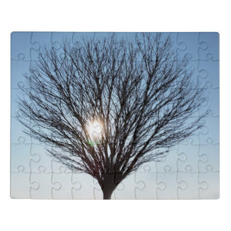 Puzzle sol del invierno