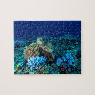 Puzzle Tortuga de mar en la gran barrera de coral