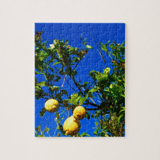 Puzzle Tres limones sicilianos