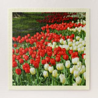 Puzzle Tulipanes hermosos