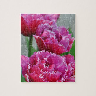 Puzzle Tulipanes rosados del loro