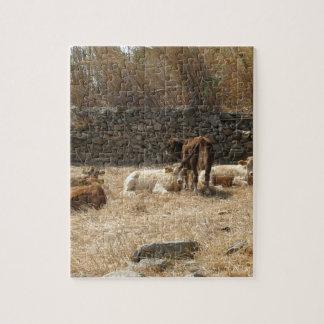 Puzzle Vacas