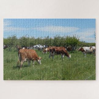 Puzzle Vacas en el pasto