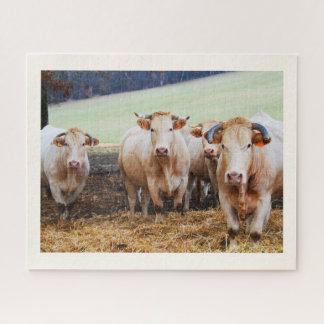 Puzzle Vacas francesas