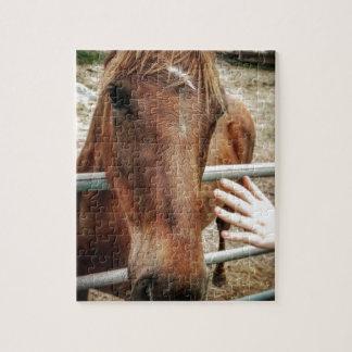 Puzzle Vida del caballo