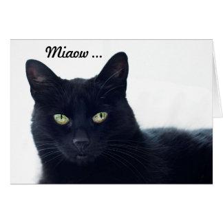¿Qué este gato nos dice en un cumpleaños? Tarjeta De Felicitación