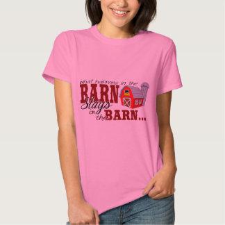 Qué sucede en las estancias del granero en el camisas