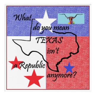 Qué usted significan TEJAS no es una república Impresión Acrílica