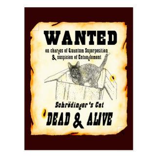QUERIDO: Postal del gato de Schrodinger