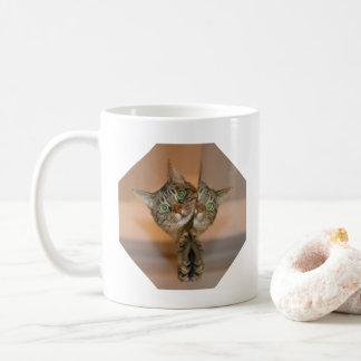 ¿Quién es que el otro gato?  Taza de café