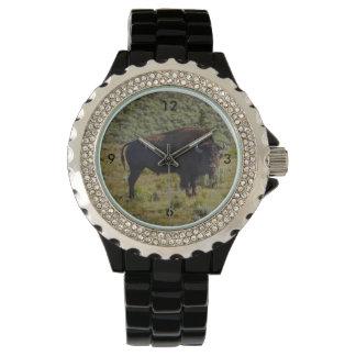Quién usted que mira relojes de pulsera