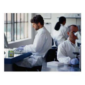 Químicos que trabajan en un laboratorio postales