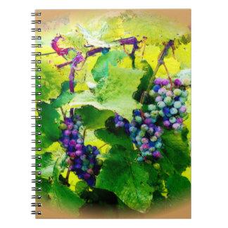 racimos de las uvas 17 cuaderno