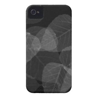 Radiografía de la hoja carcasa para iPhone 4 de Case-Mate