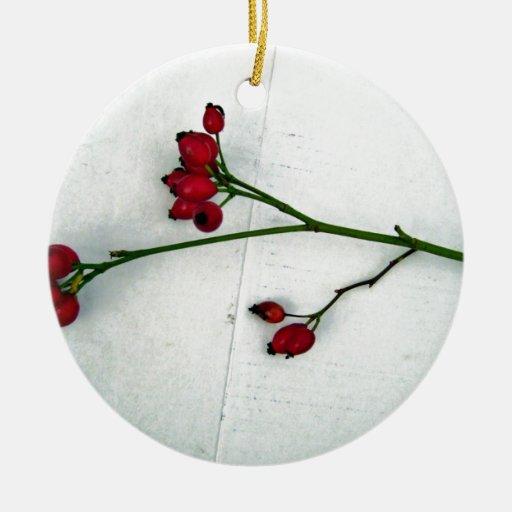 Rama verde con las frutas rojas minúsculas contra  ornamento para arbol de navidad