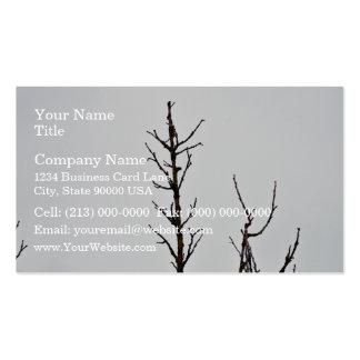 Ramas de árbol desnudas contra un cielo nublado tarjeta personal