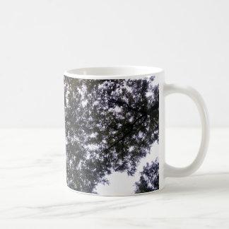 Ramas del cielo y de árbol en la taza de café