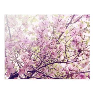 Ramas florales en colores pastel suaves tarjeta postal