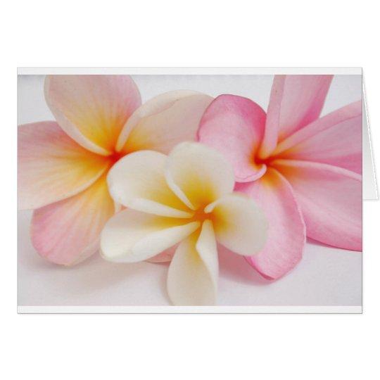 ramo de frangipanis tarjeta de felicitación