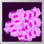 Ramo rosado de la orquídea impresiones