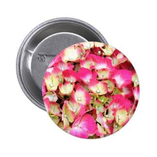 Ramo rosado del Hydrangea Chapa Redonda 5 Cm