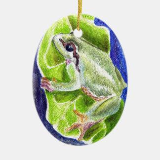 Rana arbórea - lápiz de la acuarela ornamentos de reyes magos