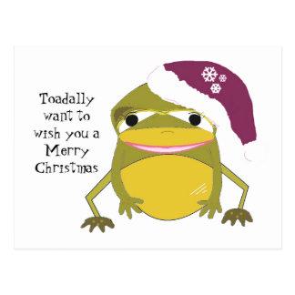 Rana chistosa en un gorra del navidad postal