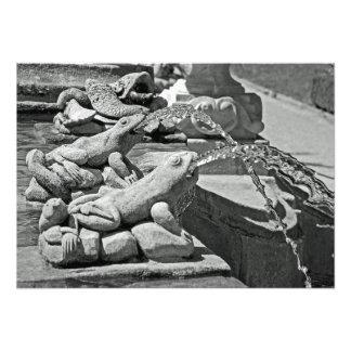 Ranas. Fragmento de la fuente Foto